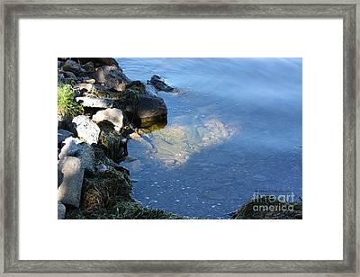 Little Bay Framed Print