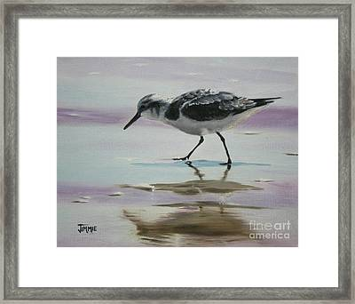 Little Beach Bird Framed Print