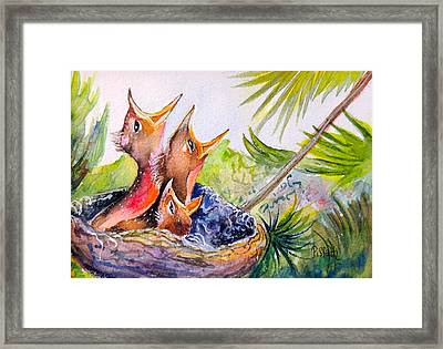 Little Beaks Framed Print by Patricia Piffath