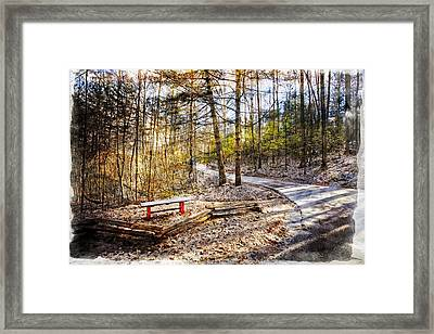 Little Bench By The Little Path Framed Print