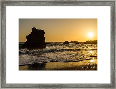 Framed Print featuring the photograph Little Bird by CML Brown