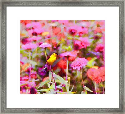 Little Birdie In The Spring Framed Print by Bill Cannon