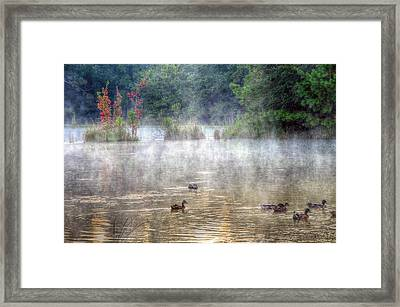 Framed Print featuring the photograph Little Bit Of Fall by Charlotte Schafer