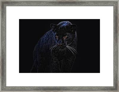 little black Jag Framed Print by Joachim G Pinkawa