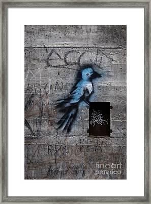 Little Blue Bird Graffiti Framed Print