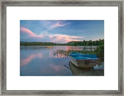 Little Blue Framed Print by Darylann Leonard Photography