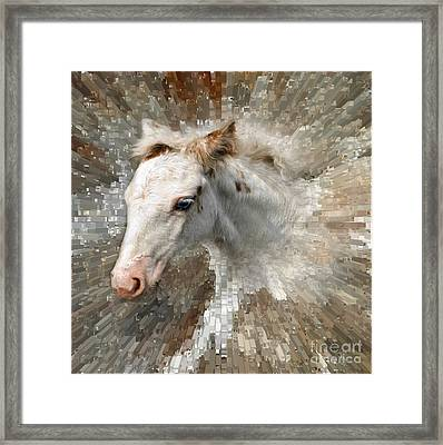 Little Blue Eye Framed Print by Liz  Alderdice