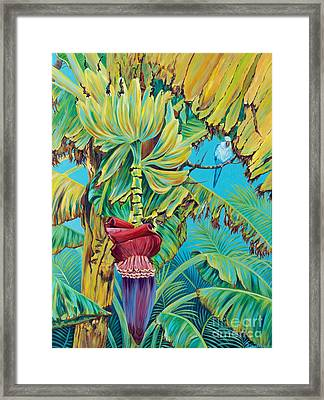 Little Blue Quaker II Framed Print by Danielle  Perry