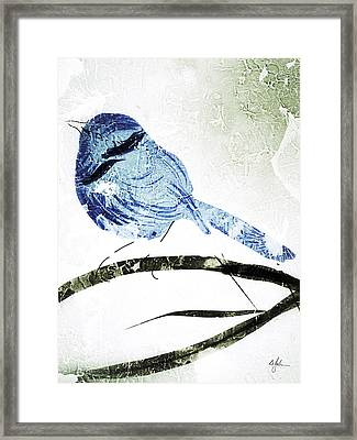 Little Blue Wren Framed Print by Barry Johansen