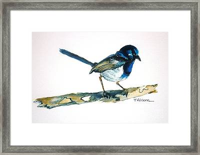 Framed Print featuring the painting Little Blue Wren - Original Sold by Therese Alcorn