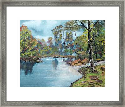 Little Brook Framed Print