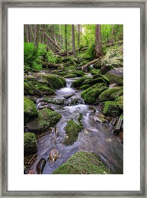 Little Bush Kill Framed Print