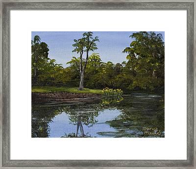 Little Chico Pond Framed Print by Darice Machel McGuire