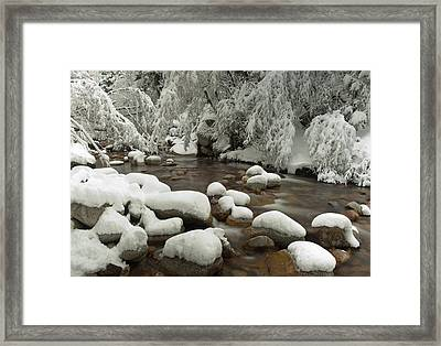 Little Cottonwood Creek And Flocked Framed Print by Howie Garber