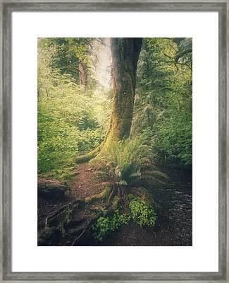 Little Creek Framed Print by Alexander Kunz