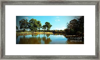 Framed Print featuring the photograph Little Creek by Angela DeFrias