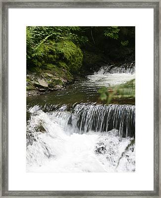 Little Creek Falls Framed Print by Rich Collins
