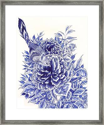Little Curiosity Framed Print by Alice Chen