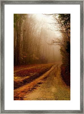 Little Dirt Road Framed Print by Laura DAddona