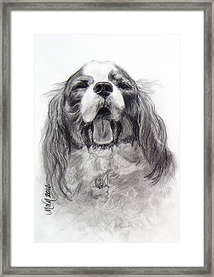 Little Dog Big Name Framed Print