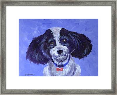 Little Dog Blue Framed Print by Richard De Wolfe