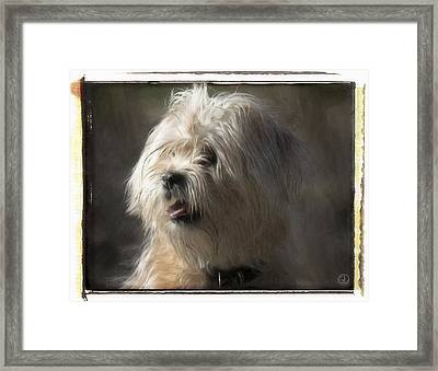 Little Doggie Framed Print by Gun Legler