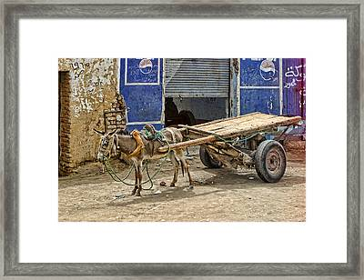 Little Donkey With Cart Framed Print by Linda Phelps