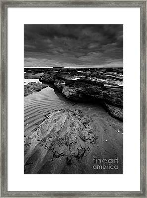 Little Eye Textures Framed Print by Alan Walley