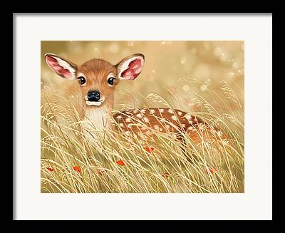 Deer Season Framed Prints