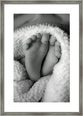 Little Feet Framed Print by Mamie Thornbrue