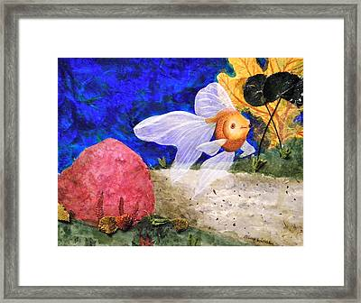 Little Fish Big Pond Framed Print