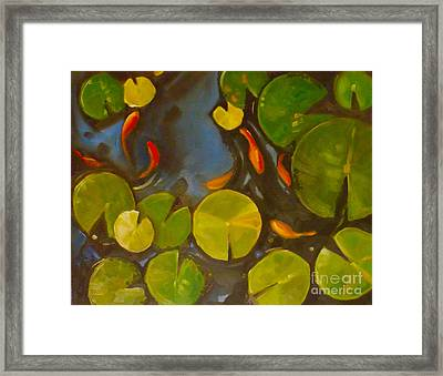 Little Fish Koi Goldfish Pond Framed Print by Mary Hubley
