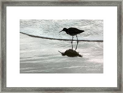 Little Footsteps Framed Print by Dan Holm