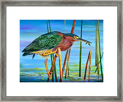 Little Green Heron Framed Print