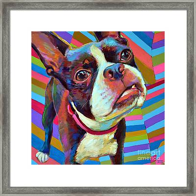 Framed Print featuring the painting Little Hank by Robert Phelps