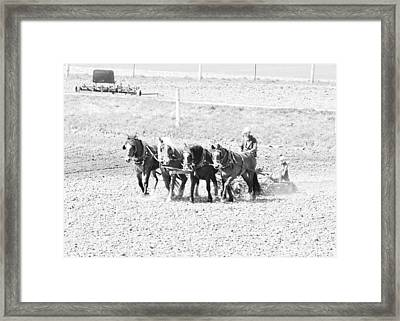 Little Helper Framed Print by BandC  Photography