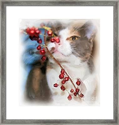 Little Kitty Framed Print