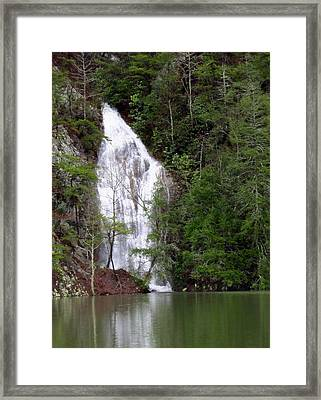 Little Laurel Branch Falls Framed Print