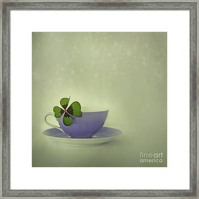 Little Luck Framed Print by Priska Wettstein