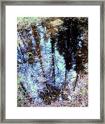 Little Mirror In The Woods Show Me What You See Framed Print