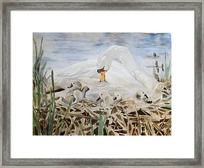 Little Ones Framed Print