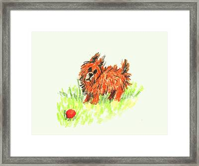Little Orange Dog Framed Print