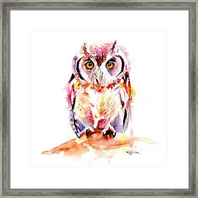 Little Owl Framed Print by Isabel Salvador