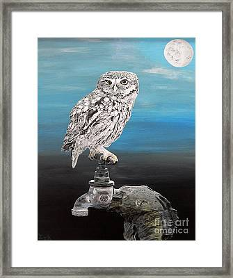 Little Owl On Tap Framed Print