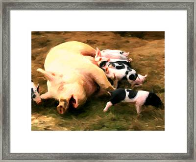 Little Piggies Framed Print by Michael Pickett