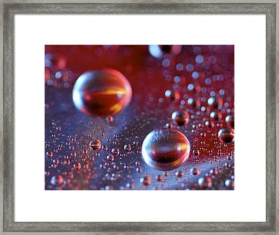 Framed Print featuring the photograph Little Planets by Michaela Preston