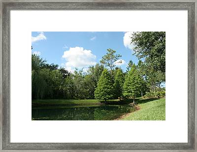 Little Pond Framed Print