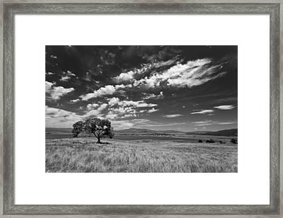 Little Prarie Big Sky - Black And White Framed Print