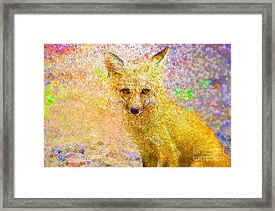 Little Red Fox Framed Print by Claire Bull