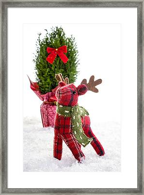 Little Reindeer Christmas Card Framed Print by Edward Fielding